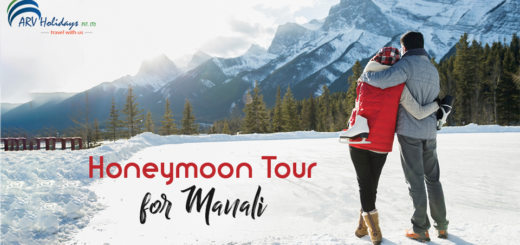 Manali Honeymoon Tour,